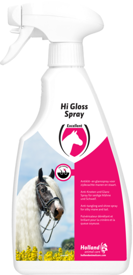 Hi Gloss Spray 500 ml